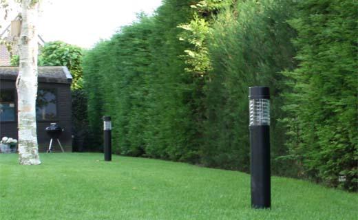 Licht in de tuin: sfeervol en veilig