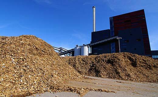 Eensluidend advies over grondstof biomassacentrale Langerlo