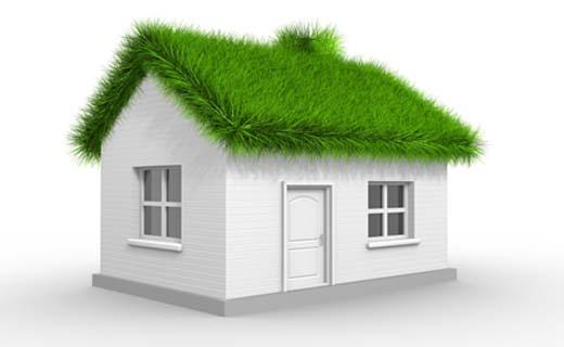 Verlaag jouw energiekosten dankzij een groen dak