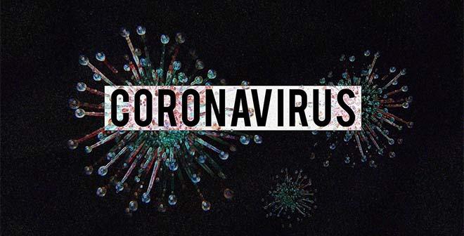 Dossier Coronavirus / COVID-19