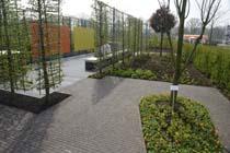 Belgische kantoortuin anno 2020: Sober en inspirerend
