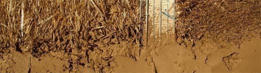 Ecologisch bouwen: leembouw