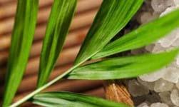 Duurzame keuken in 5 stappen