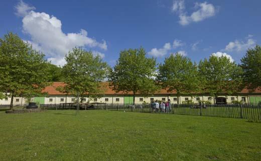 Jonge ontwerpers gaan aan de slag in boerderij Wortel-Kolonie