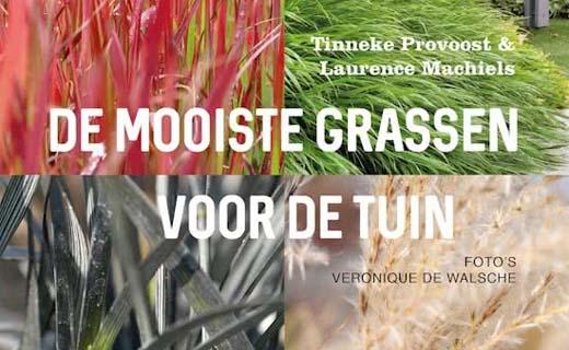 De mooiste grassen voor de tuin
