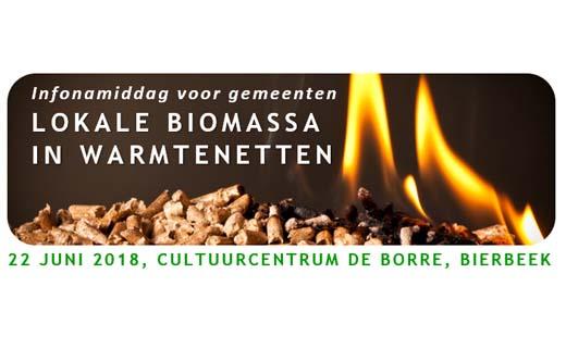 Infonamiddag: Lokale biomassa in warmtenetten