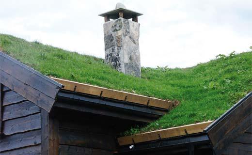 Een groendak zorgt voor een frisse en ecologische woning