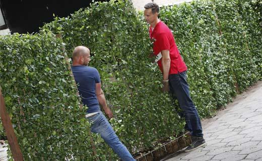 Nieuwe Kant & Klaar Haag voor in de tuin