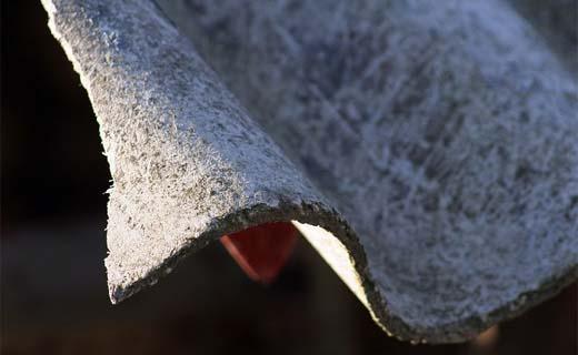 Het eerste Vlaamse asbestcongres