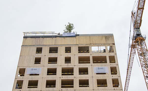 Meiboom geplant op 40 meter hoge zorgtoren Geel Astor