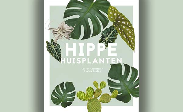 Hippe huisplanten
