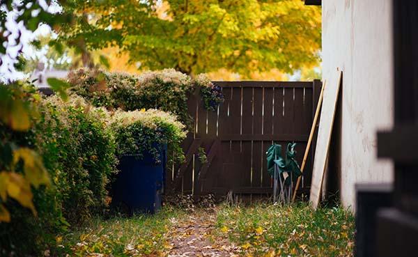Meer privacy creëren in je tuin met deze tips