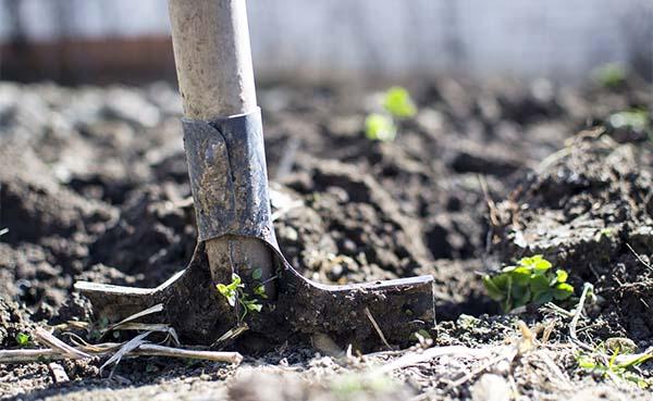 Wat zijn de voordelen van het omploegen van de tuin?