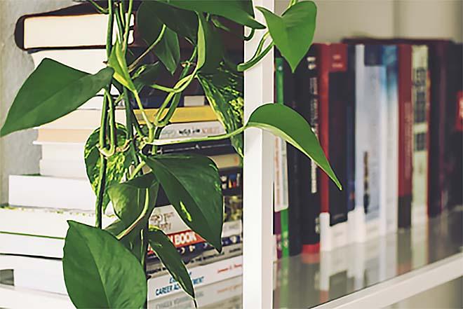 De 5 handigste opbergplekjes in een woonkamer