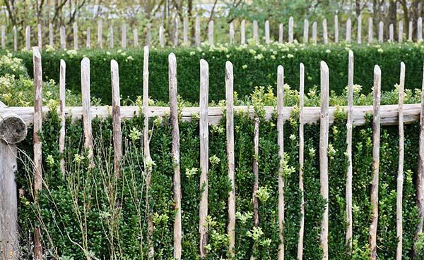 Waar loopt de grens tussen uw tuin en die van uw buurman?