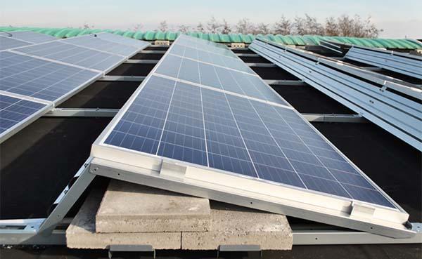 Populariteit van zonnepanelen blijft groeien; dit zijn de redenen