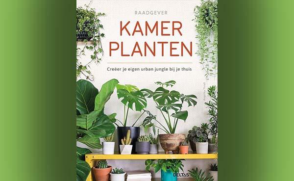 Kamerplanten - Creëer je eigen urban jungle bij je thuis