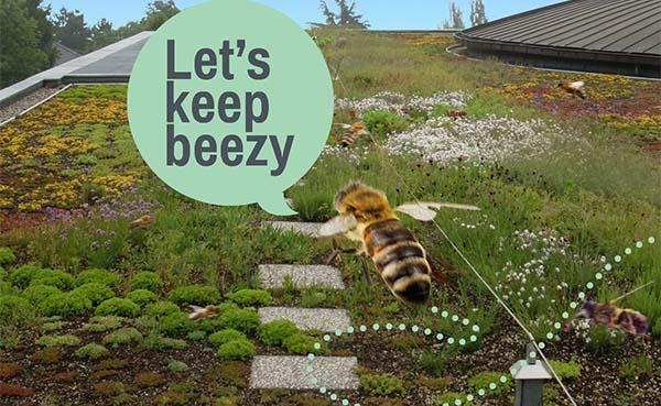 Zoemdak moet biodiversiteit naar een hoger niveau tillen