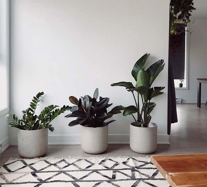 Tips voor een natuurlijke interieurstijl