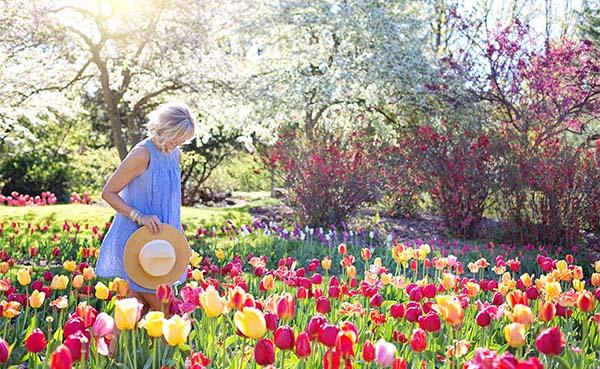 Tips-voor-een-heerlijke-tuin