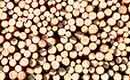 Wat is het verschil tussen massiefhout, fineer, MDF- en spaanplaat?