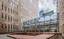 Duurzame polderdaktuin World Trade Center The Hague geopend
