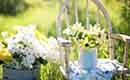 Tuin ideeën: kleine tuinen (fotospecial)