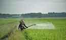 Moeten wij ons zorgen maken over pesticiden in het kraanwater?