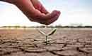 Water besparen is een noodzaak, het hele jaar door