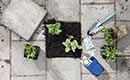 40 procent Nederlandse 'tuin' is betegeld