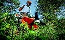 Waarom tuinklompen ideaal zijn tijdens het tuinieren
