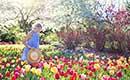 Tips voor een heerlijke tuin